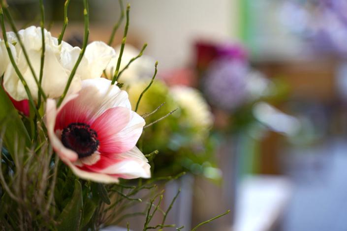 Fotografie für Erlewein, Floristik & Dekoration